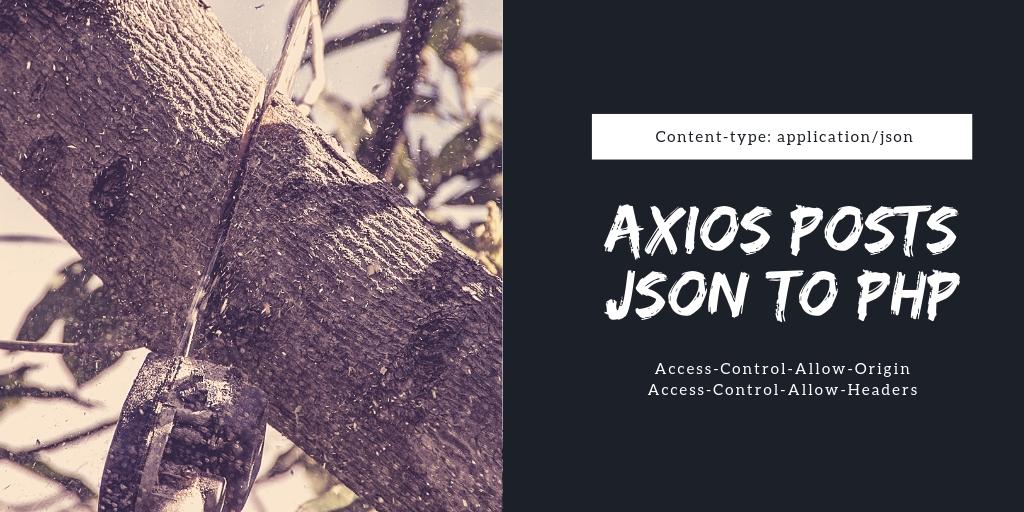 axiosを使ってPHPにjsonを投げ付ける