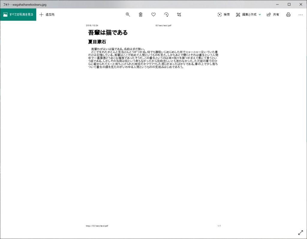 画像変換されたPDF(テスト成功)