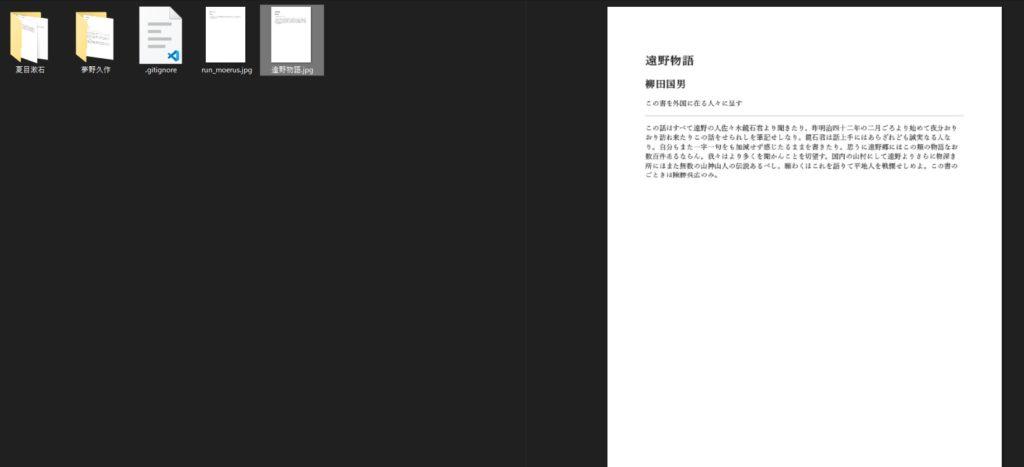 変換元PDFのプレビュー1