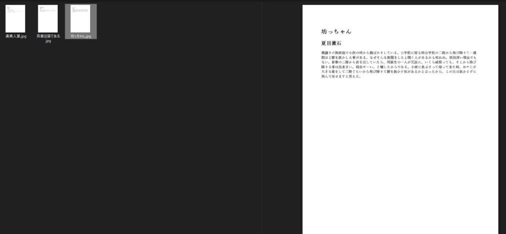 変換元PDFのプレビュー2